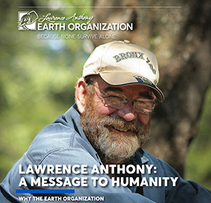 MESSAGE-TO-HUMANITY-COVER