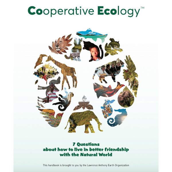 COVER-OF-CO-ECO---7-QUESTIONS