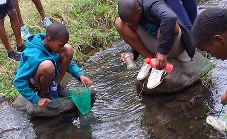 SA-Camp-Students-studying-water-life