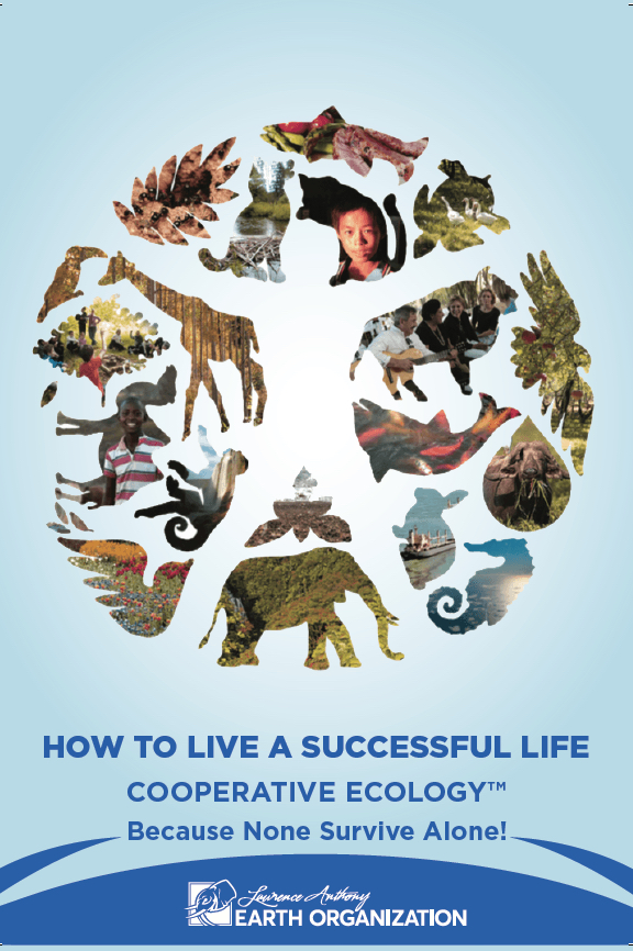 COVER - How to Live a Successful Life
